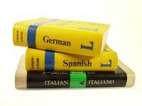 słownik językowy
